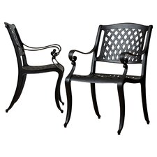 Grimm Cast Aluminum Outdoor Chair (Set of 2)