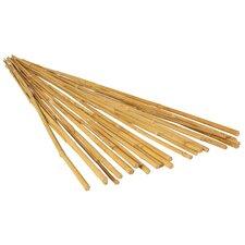 Natural Bamboo Stake (25-Pack) (Set of 2)