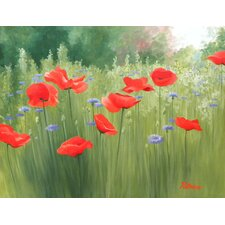 Backyard Poppies by Patrice Procopio Painting Print on Wrapped Canvas