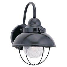 Sebago 1-Light Outdoor Lantern