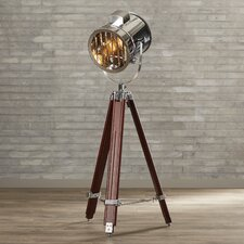 Brushton Floor Lamp