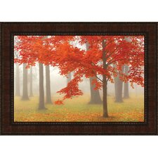 Autumn Mist I by Donna Geissler Framed Photographic Print