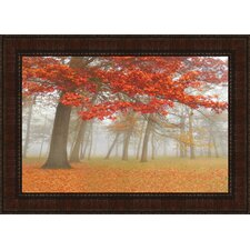 Autumn Mist II by Donna Geissler Framed Photographic Print