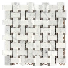 Bianco Carrara Basket Weave Mosaic Polished Tile in Gray Dot