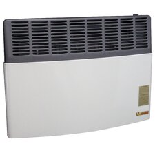 17,000 BTU LP Gas Direct Vent Heater