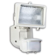 1 Light Single Head Motion Activated Flood Light