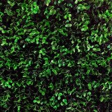 Artificial Ficus Spring Wall Décor (Set of 4)