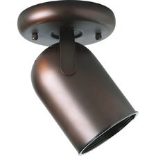 Round Back Ceiling Mount Directional