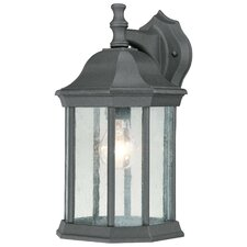 Hawthorne 1 Light Wall Lantern