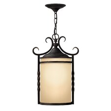 Casa 1 Light Outdoor Hanging Lantern