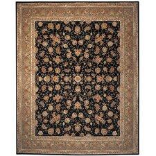 Persian Court Black/Light Green Sarouk Area Rug