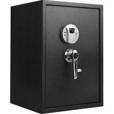 Large Biometric Safe