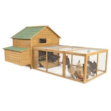Chicken Fort Run