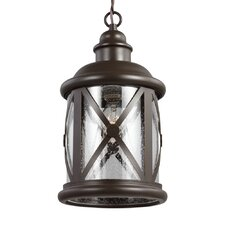 Lakeview 1 Light Foyer Pendant with Clear Seeded Glass