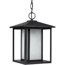Hunnington 1 Light Outdoor Hanging Lantern