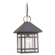 Largo 1 Light Outdoor Hanging Lantern