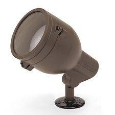 Landscape Spot Light with Convex Lens