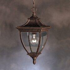 Amesbury 1 Light Outdoor Ceiling Pendant