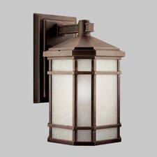 Cameron 1 Light Wall Lantern