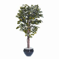 Nu-Dell Artificial Ficus Tree