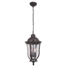 Frances 2 Light Outdoor Hanging Pendant