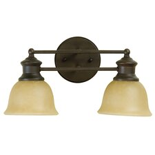 Lite Rail  Vanity Light in Aged Bronze