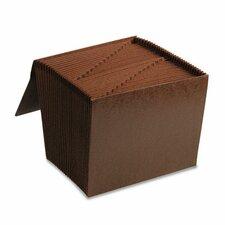 1-31 Accordion Expanding Files, 31 Pocket