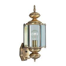 Outdoor Basics 1 Light Wall Lantern