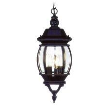 Frontenac 3 Light Outdoor Hanging Lantern