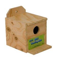 Finch Nest Birdhouse (Set of 2)