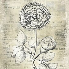 Revealed Artwork Antiqued Bloom I Graphic Art on Wrapped Canvas