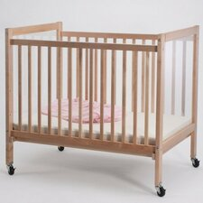 Infant Clearview Convertible Crib with Mattress