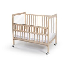 Clear View Folding Rail Convertible Crib with Mattress