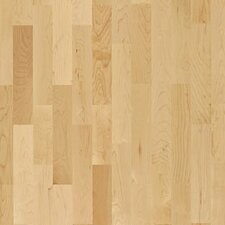 "American Naturals 7-7/8"" Engineered Hard Maple Toronto Hardwood Flooring"