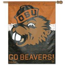 NCAA College Vault Flag