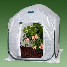 4 Ft. W x 4 Ft. D Polyethylene Mini Greenhouse
