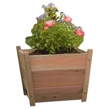 Phat Tommy Square Planter Box