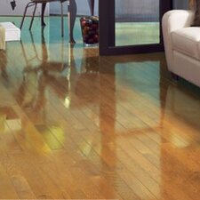 "Color Strip 2-1/4"" Solid White Oak Hardwood Flooring in Natural High Gloss"