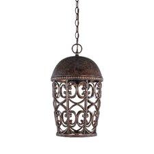 Amherst 1 Light Outdoor Hanging Lantern