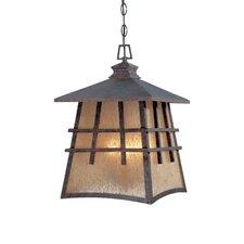 Oak Park 4 Light Outdoor Hanging Lantern