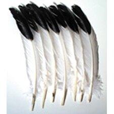 Imitation Eagle Feathers (Set of 2)