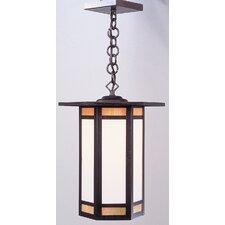 Etoile 1 Light Outdoor Hanging Lantern