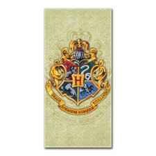 Entertainment Harry Potter Beach Towel