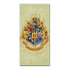 Entertainment Harry Potter Beach Towel
