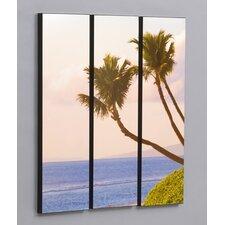 Maui Sweeping Palms 3 Piece Framed Photographic Print Set