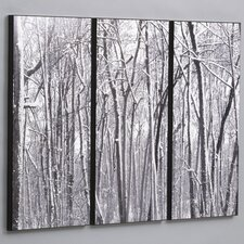 Snow Covered Woods 3 Piece Framed Photographic Print Set