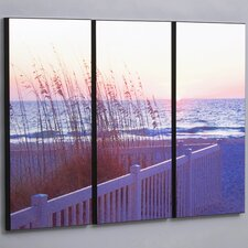 Gulf Sunset with Sea Wheat 3 Piece Framed Photographic Print Set