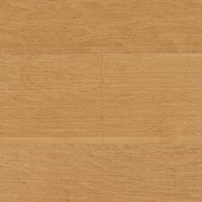 "Wilson 5"" Engineered Maple Hardwood Flooring in Caramel"