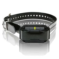 SureStim M Plus Extra Dog Collar