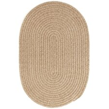 Braided Natural Indoor/Outdoor Area Rug